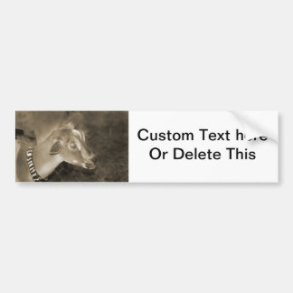 Alpine doe sepia shaved baby goat striped face bumper sticker