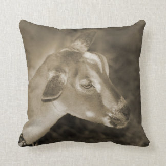 Alpine doe sepia shaved baby goat striped face pillow