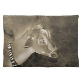 Alpine doe sepia shaved baby goat striped face placemat
