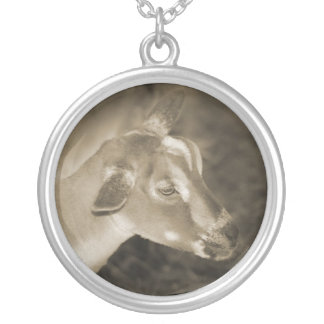 Alpine doe sepia shaved baby goat striped face silver plated necklace