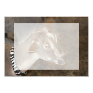 Alpine doe shaved baby goat striped face personalized announcement