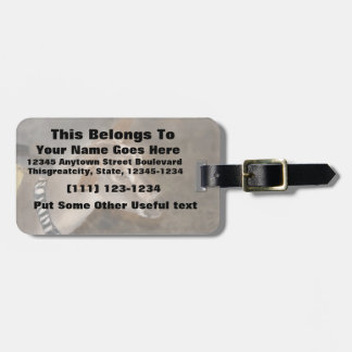 Alpine doe shaved baby goat striped face luggage tags