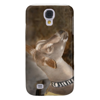 Alpine doe shaved baby goat striped face samsung galaxy s4 case