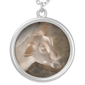 Alpine doe shaved baby goat striped face silver plated necklace