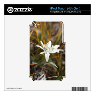 Alpine Edelweiss iPod Touch 4G Skins