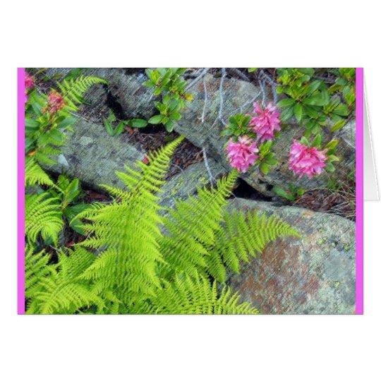 """""""Alpine Flora"""" Card"""