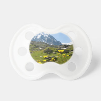 Alpine flowers - Beautiful! Baby Pacifiers