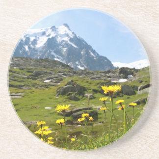 Alpine flowers - Beautiful! Drink Coaster