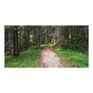 alpine forest card