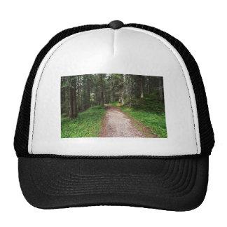 alpine forest mesh hat