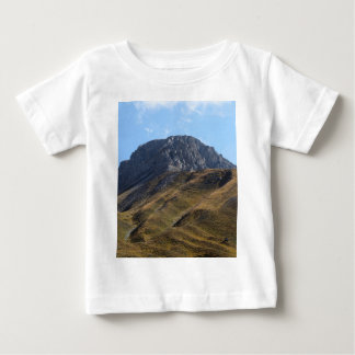 Alpine grassland above the timberline. baby T-Shirt