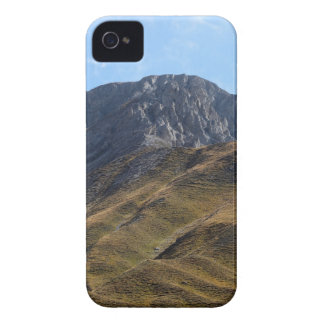 Alpine grassland above the timberline. iPhone 4 cover
