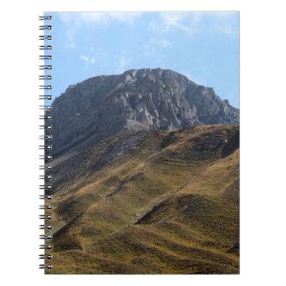 Alpine grassland above the timberline. notebook
