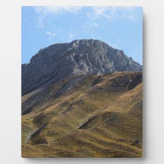 Alpine grassland above the timberline. plaque