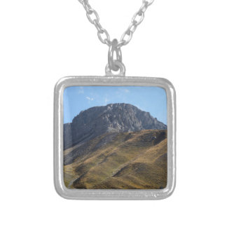 Alpine grassland above the timberline. silver plated necklace