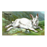 Alpine Hare Double-Sided Standard Business Cards (Pack Of 100)