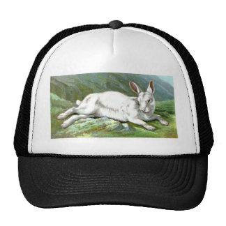 Alpine Hare Trucker Hat