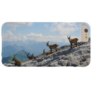 Alpine Ibex Wild Mountain Goats Barely There iPhone 6 Plus Case