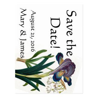 Alpine Iris Snowdrop Flower Save the Date Postcard