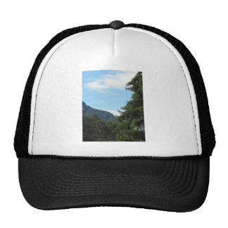 Alpine landscape with green fir and forest trucker hat