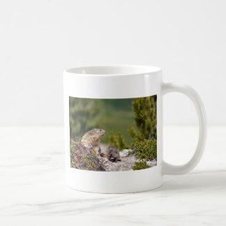 Alpine marmot and its young coffee mug