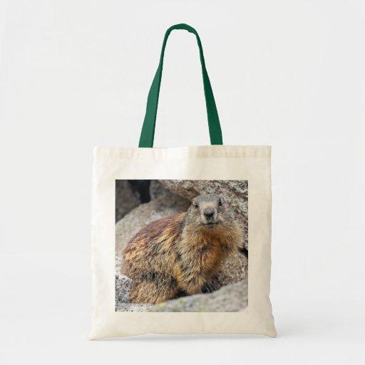 Alpine Marmot Bag