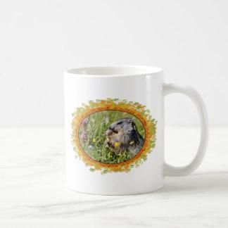 Alpine marmot eating flower in frame of leaves mugs