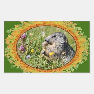 Alpine marmot eating flower in frame of leaves rectangular sticker