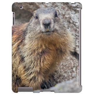 Alpine Marmot iPad Case