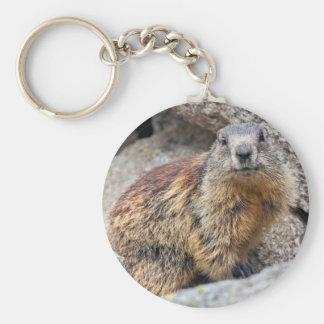 Alpine Marmot Keyring