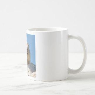 Alpine marmot on rock coffee mug