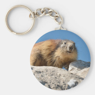 Alpine marmot on rock keychain