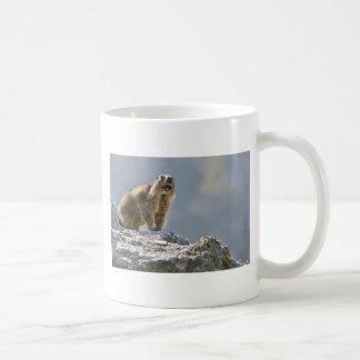Alpine marmot on rock mugs