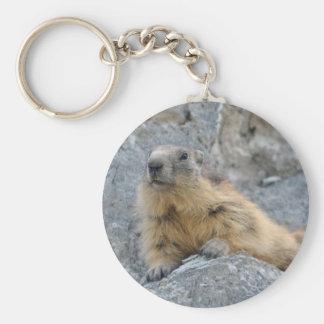 Alpine marmot on the roch keychain