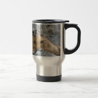 Alpine marmot on the roch travel mug