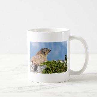 Alpine marmot on the rock coffee mug