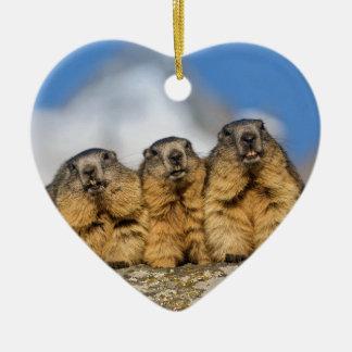 Alpine Marmots Ceramic Ornament