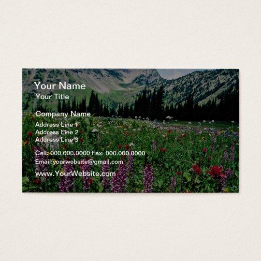 Alpine meadow in the Pasayten Wilderness, Californ Business Card
