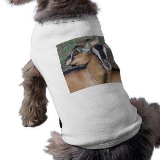 Alpine Oberhasli goat cross young does kids T-Shirt
