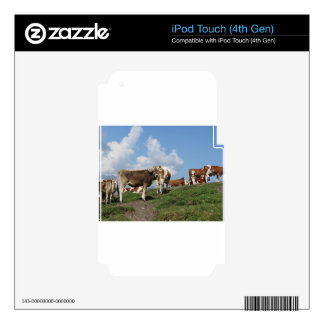 Alpine pasture with cows decals for iPod touch 4G