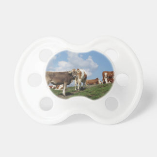 Alpine pasture with cows pacifier