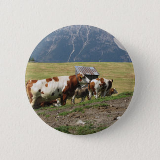 Alpine pasture with cows pinback button