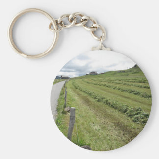 Alpine pasture with piles of grass clippings keychain