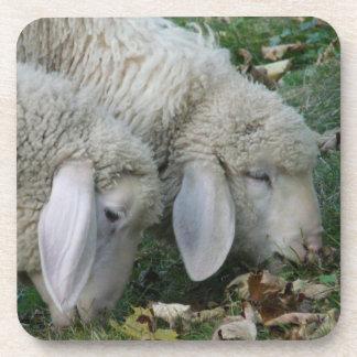 Alpine Sheep Grazing Coasters