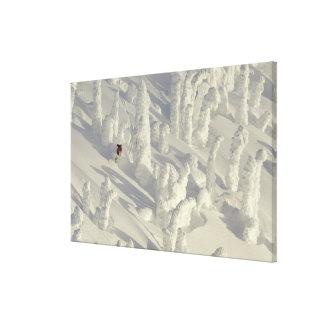 Alpine Skier in thick snowghosts at Big Canvas Print