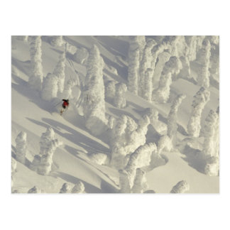 Alpine Skier in thick snowghosts at Big Postcard