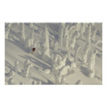 Alpine Skier in thick snowghosts at Big Poster