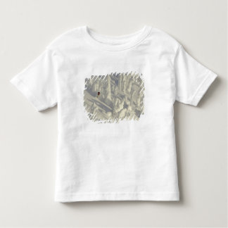 Alpine Skier in thick snowghosts at Big Toddler T-shirt