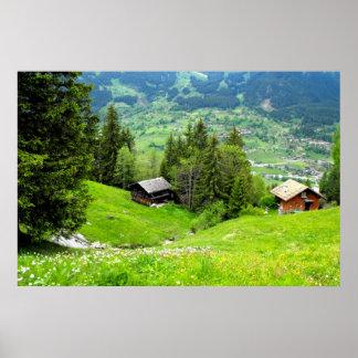 Alpine summer in Switzerland Poster
