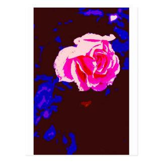Alpine Sunset Chintz Rose Postcards